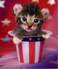 Happy Memorial Day from Heidi\'s Historic Home & Pet Care