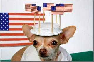 Happy Memorial Day from Heidi\'s Historic Home & Pet Care2
