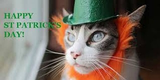 Happy St. Patty\'s Day from Heidi\'s Historic Home & Pet Care