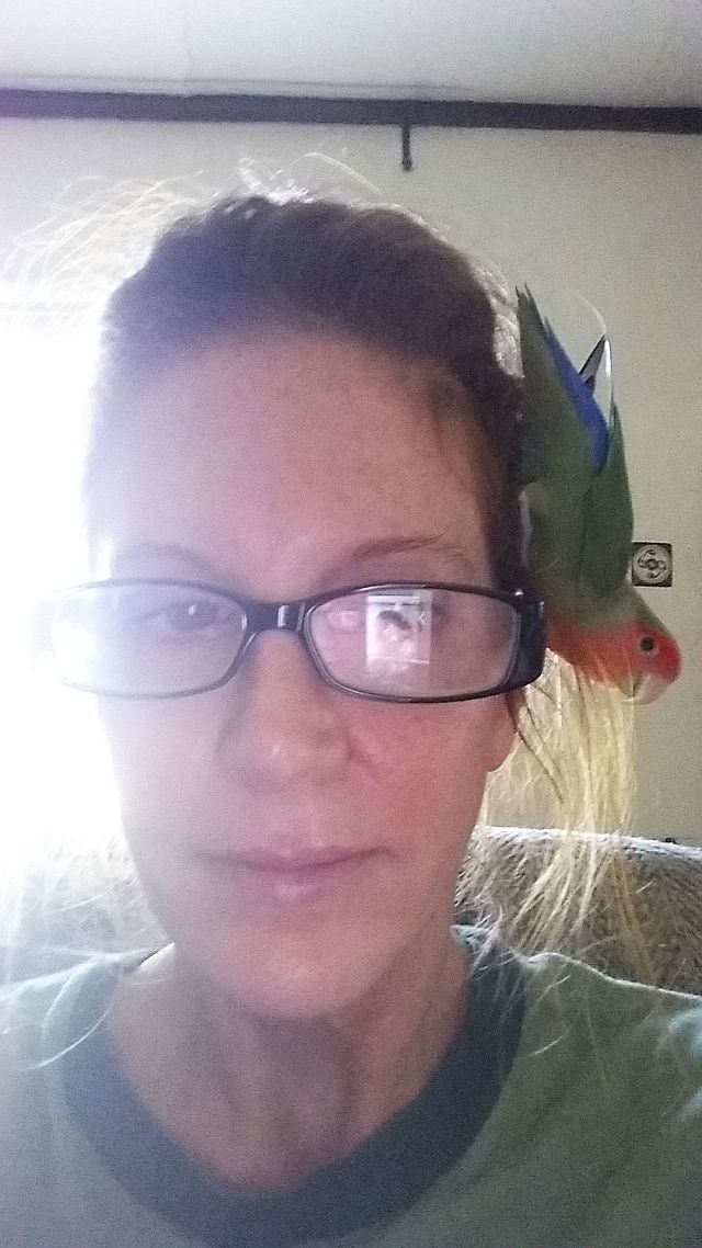 Bird Sitting in Phx with Heidi's Historic Home & Pet Care8