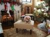 bitsy-elvis-christmas-2011-117