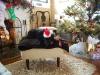 joy-christmas-2011-007