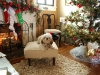remis-first-christmas-2011-060