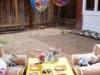 Phx Pet Parties, Phx Doggie Day Care, Doggie Play Dates Phx, Dog Boarding Phx0